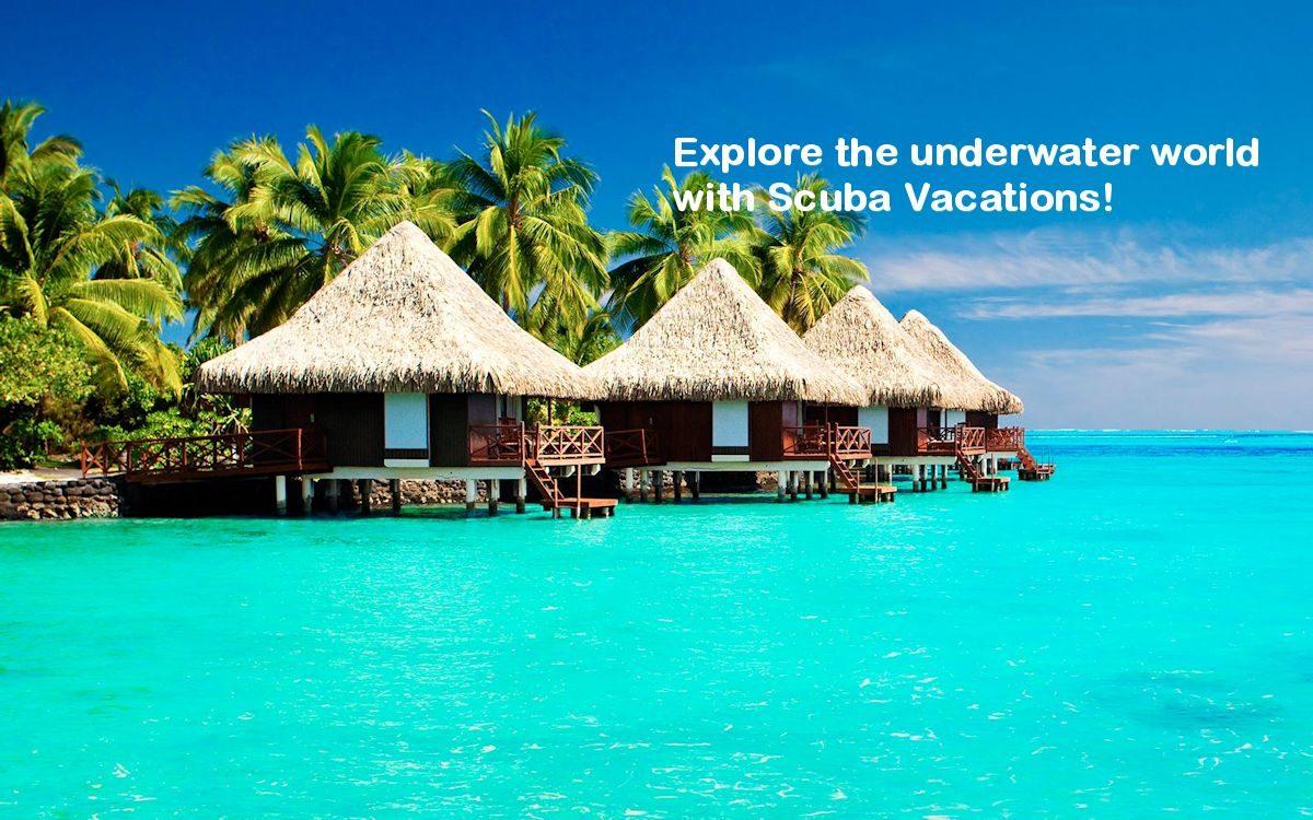 Scuba Vacations